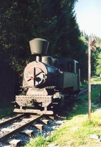 Lesnícky skanzen: Lesní železnice