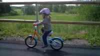 Dítka na kolech se vyžijí, trať není náročná na stoupání