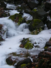 cestu lemujeme zmrzlí potok