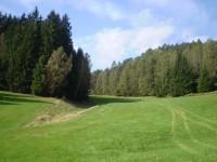 Nad Jetřichovicemi