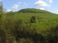 Hradisko Holý kopec