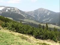 Liščí hora
