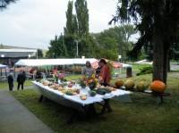Výstavka místní úrody