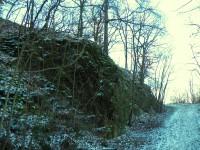 Před vyhlídkou u Masarykova kamene
