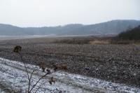 Údolí mezi Šibernou a Babou