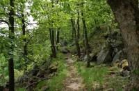 Góry Suche: modra cesta k Andrzejowka Boudzie