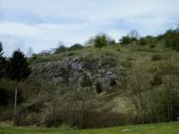 skalní lesostep
