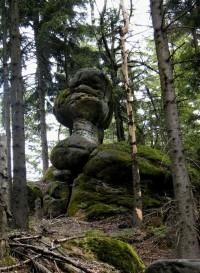 skalní hříbek