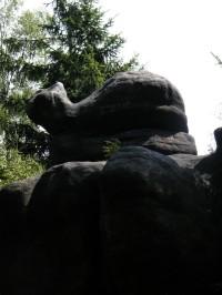 kočka (nebo velryba) na Božanovickém špičáku
