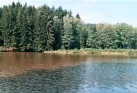 rybník na Javorce