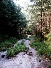 cesta ke Kotišti (ohlédnutí)