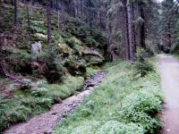 Malý Vlčí potok
