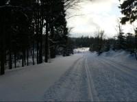 Cesta k Rovince od Šp. Mlýna