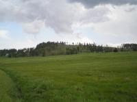 Nad Rýžovnou: nyní odlesněný vrcholek nabízí zajímavé výhledy po centrální části Krušných hor