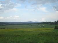 Rýžovna: pohled na vesničku s Fichtelberg v pozadí