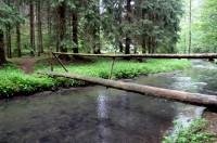 Údolí Bílého potoka (2)