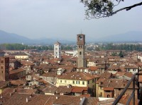 Lucca: pohled z věže Guinigi