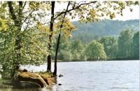 Černá Voda, Velký rybník