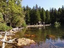 černé jezero, šumava: černé jezero, šumava