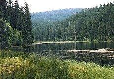 Jezero Laka: Jezero Laka