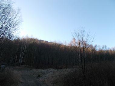 fotka k příspěvku Návštěva přírodní rezervace Březina.