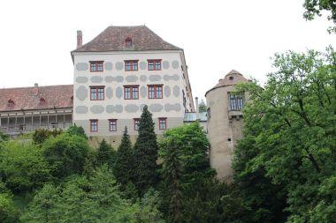 Opočno, pohled na zámek z údolí Zlatého potoka