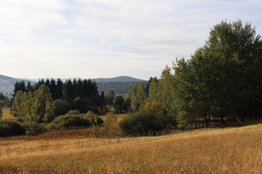 Pohled z cesty po zelené k jihu