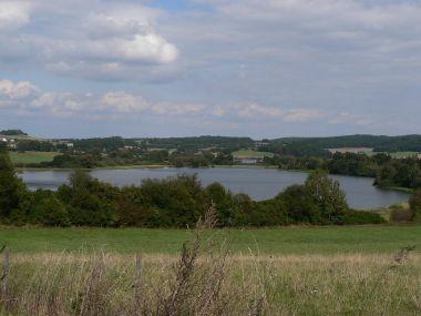 Rezervace Zbynické rybníky