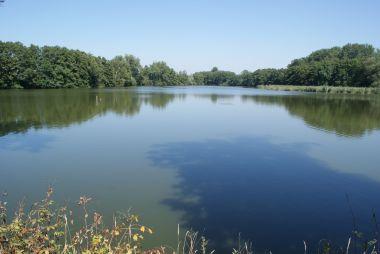 Velký zálešský rybník