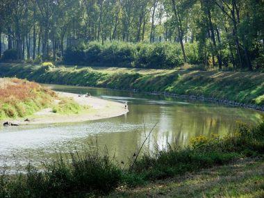 Meandry řeky Moravy