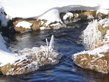 Hamerský potok má svůj půvab v každé roční době - tedy i v zimě.