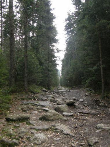 Cesta na Čertovo jezero je opravdu kamenitá