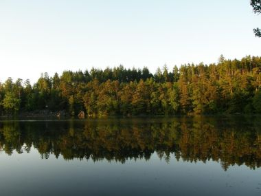 Zdejší rybník chránil i hrad Křikavu