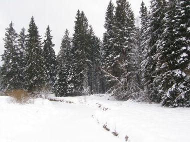 Studená Vltava se tu v zimě schovává pod ledový příkrov
