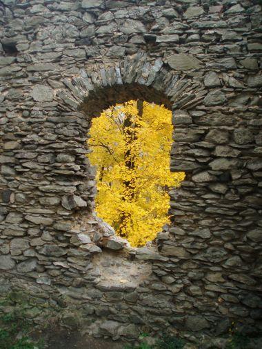 Okno do přírody