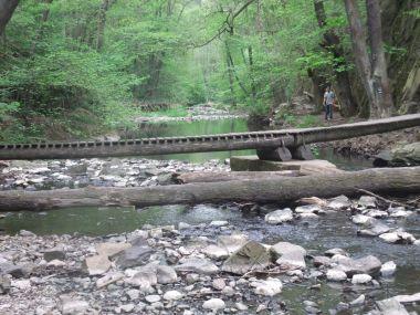 Pohled od Skryjského jezírka po proudu potoka