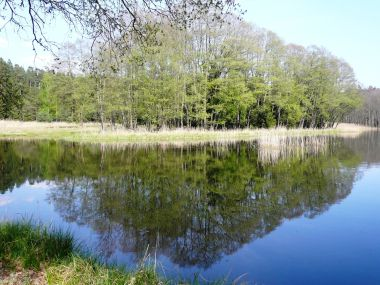 Vavrouškův rybník