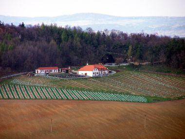 nejvýše položené vinařství Sádek - Kojetice na Moravě; Foto: zdroj archiv Vinařského fondu