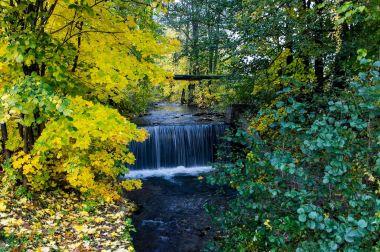 fotka k příspěvku Rudohorský potok – méně známý klenot Jeseníků