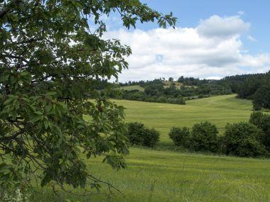 Od cesty nad Bohutínem