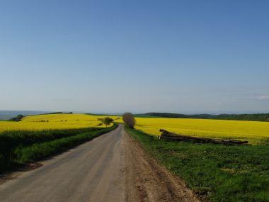 Od Orlovické pahorkatiny směrem k Ivanovicím na Hané