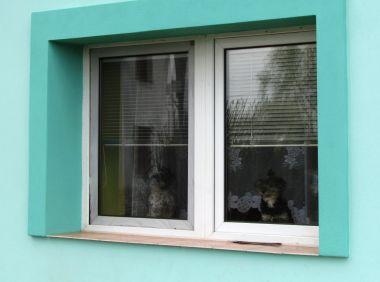 pejsci v okně