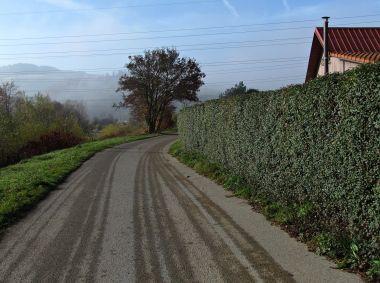 cestou podél břehů Bečvy
