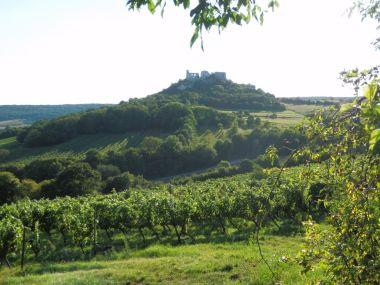 fotka k příspěvku Zřícenina hradu Falkenstein