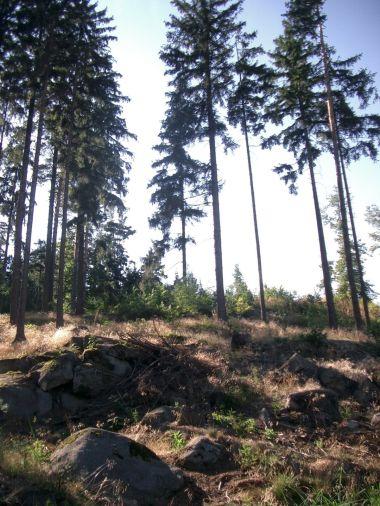 skalky u Smolného vrchu