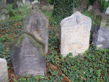 Kolín - židovský hřbitov
