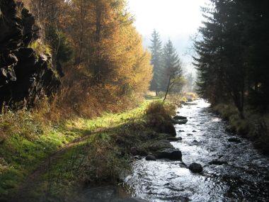 Prunéřovský potok