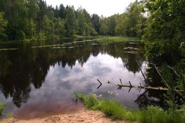 krajina kolem řeky Valge