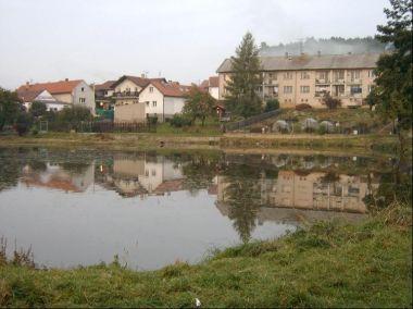 Rybník: rybník v jižní části obce