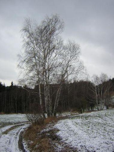 Krajina nad Aueršperkem